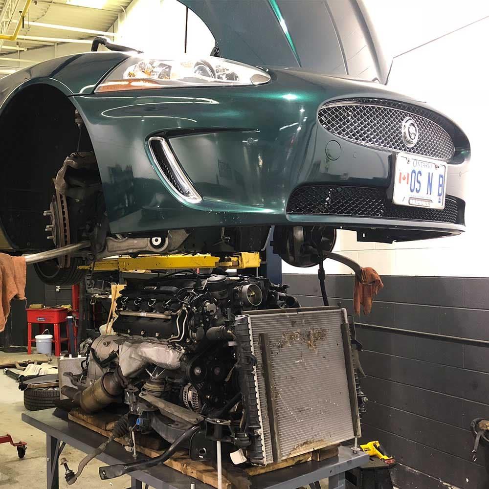 Jaguar_Service 03